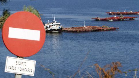 Rescatados dos tripulantes de un pesquero tras chocar con un buque en la Ría de Vigo