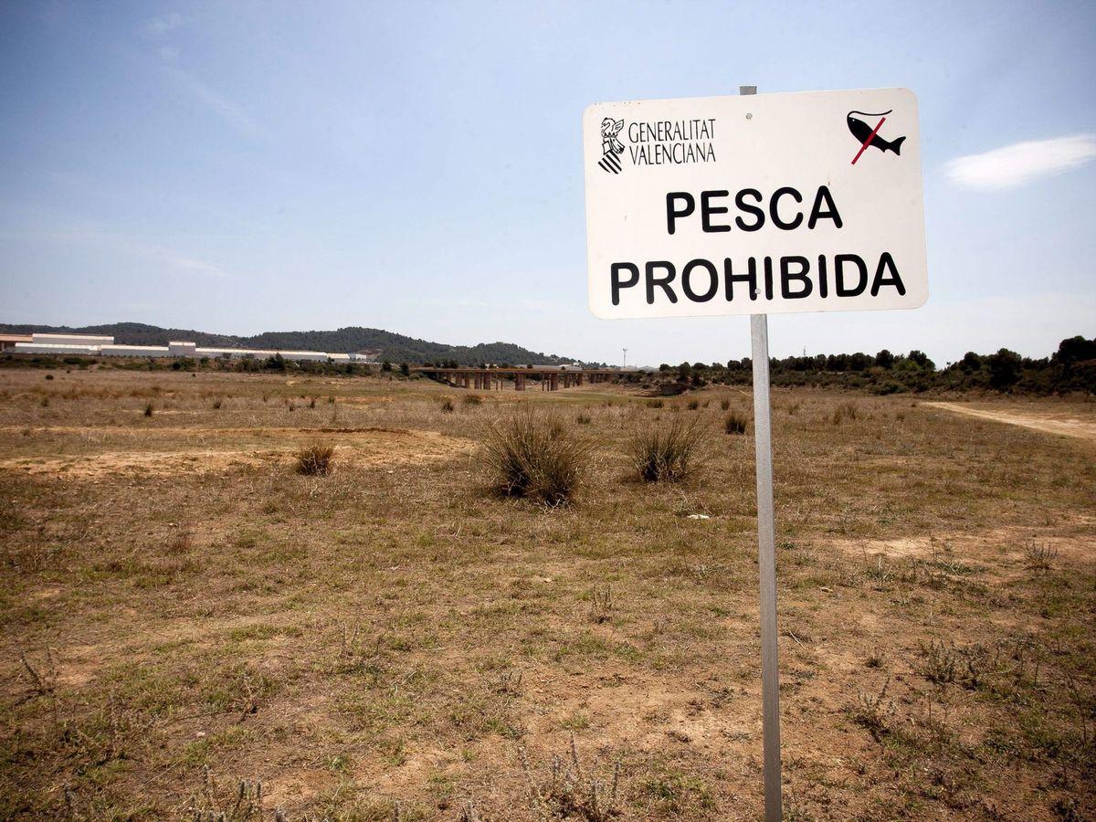 Foto: La sequía se está cronificando en España. (EFE)