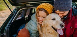Post de Los 10 mejores destinos para viajar con tu mascota por España