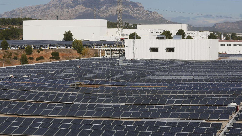 Placas solares (Foto: EFE)