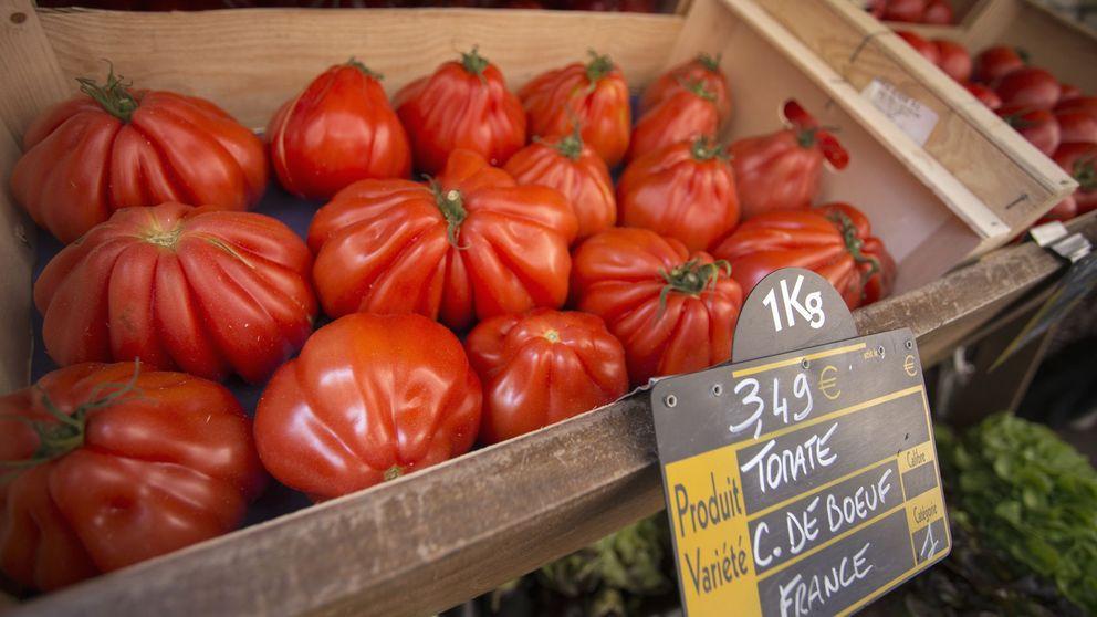 La agricultura ecológica no podría alimentar al mundo