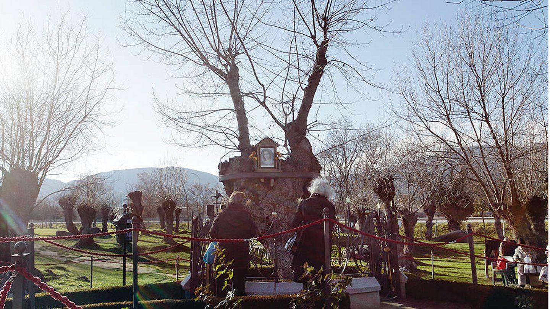 La finca Prado Nuevo, donde está enterrada la vidente de El Escorial. (Enrique Villarino)