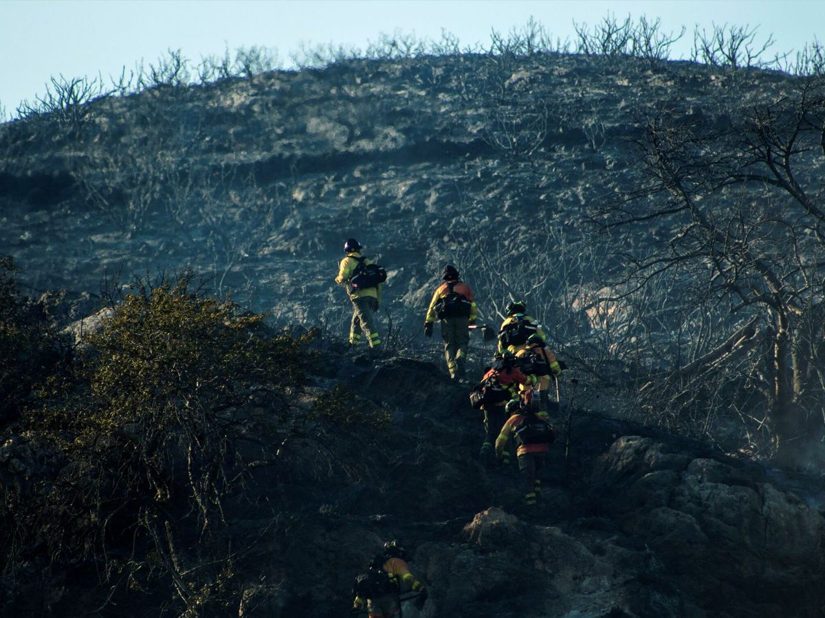 Foto: Imagen reciente de bomberos del Plan Infoca en un incendio en Granada. (EFE)