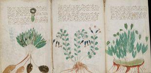 Post de El misterio del manuscrito Voynich: lo que se ha descubierto