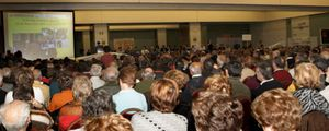 La venta de los bienes de Fórum Filatélico estará terminada en 2012