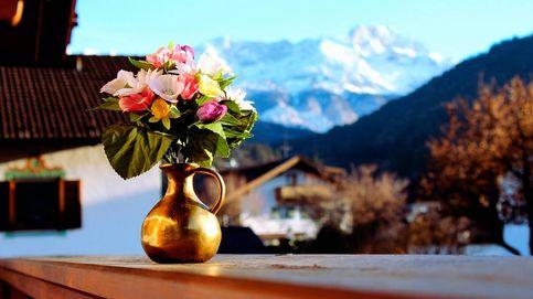 No te pierdas las flores artificiales más bonitas que decorarán tu hogar