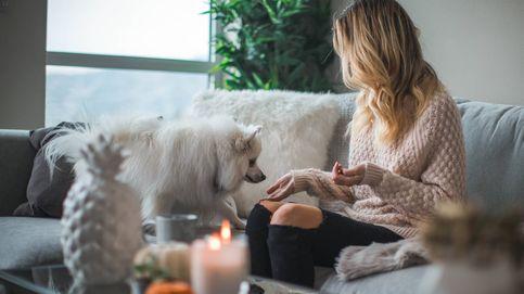 Decora tu sofá con estos cojines rebajados de H&M Home y no te pierdas los estrenos de Netflix