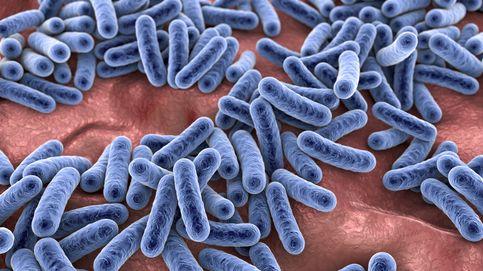 Así afecta la microbiota a tu capacidad para adelgazar
