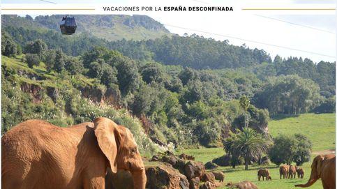Descubre este verano Cabárceno, el Jurassic Park español