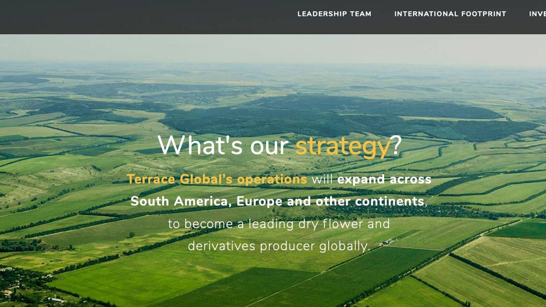 Una captura de la web de Terrace Global Inc.
