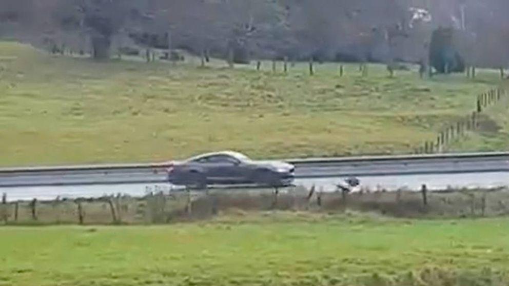 Graban en vídeo el atropello de un coche a un jabalí con un final increíble