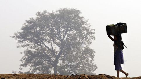 Niebla en Nueva Delhi