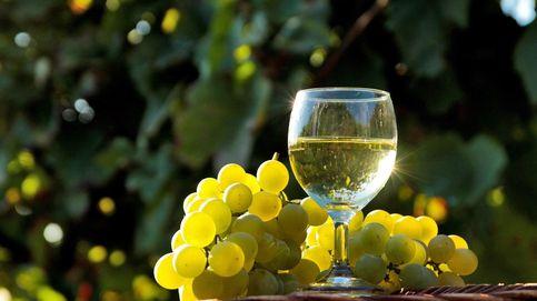 Maridajes vino a vino: Godella