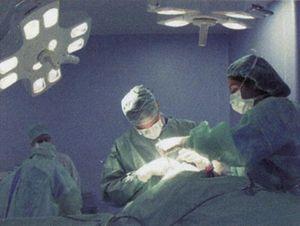 """El cirujano de """"Marbella Clinic"""", Pierre Albrecht, ejercía la medicina con un título falso"""