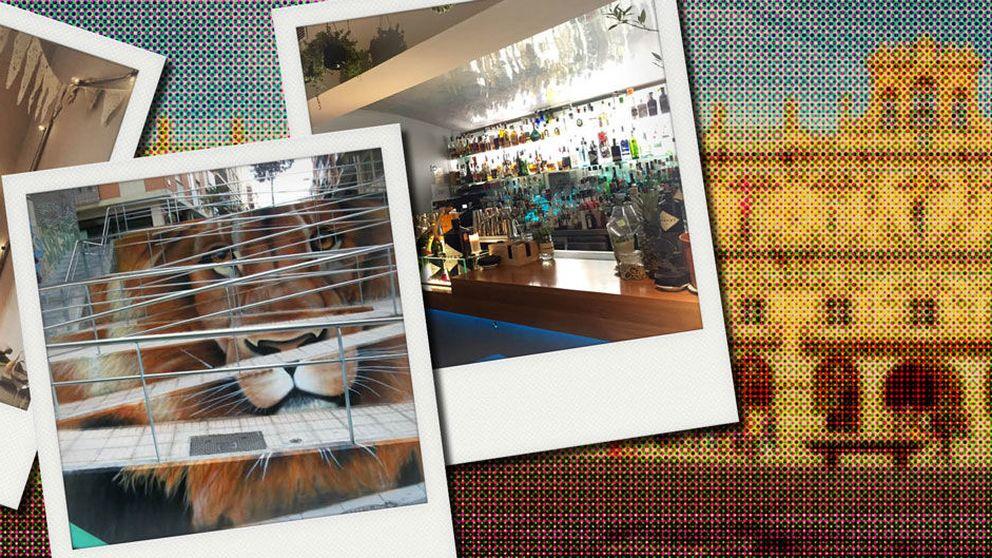 Salamanca despierta: la ruta de lugares con encanto por el último destino cool
