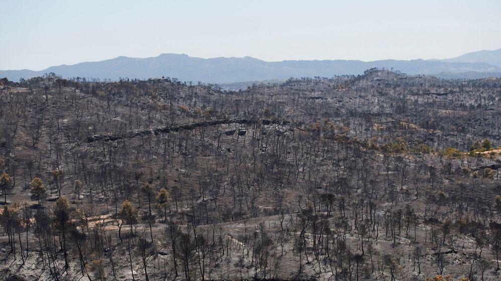 Foto: Casi controlado el incendio de Tarragona. (Efe)