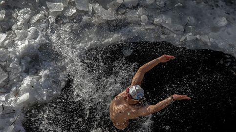Alerta por gripe aviar en la India y  natación de invierno en Pekín: el día en fotos