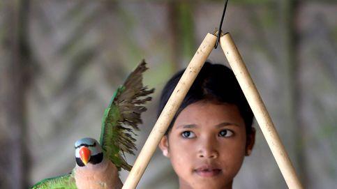Vida diaria de un tribu en India