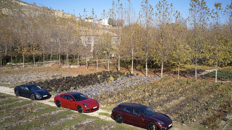 El Panamera se ofrece con tres carrocerías, corta, larga y Sport Turismo o familiar.