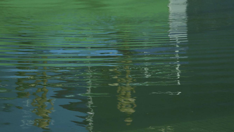 Juegos ol mpicos r o 2016 el misterio del agua verde de la piscina de saltos de los juegos - Agua de piscina verde ...
