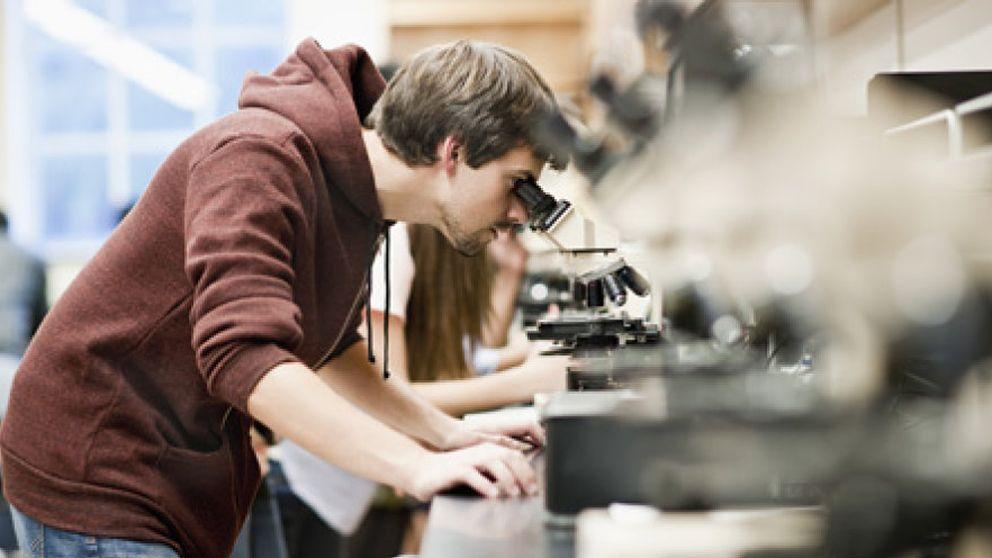 """""""El profesor ideal verá la enseñanza como un obstáculo para su carrera"""""""