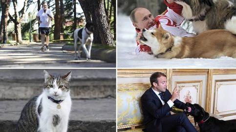 El perro que hace footing con Rajoy y otras mascotas de líderes mundiales