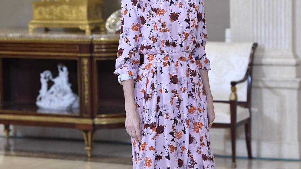 Foto: La reina Letizia, durante la audiencia. (Limited Pictures)