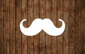 Movember: temporada de bigotes