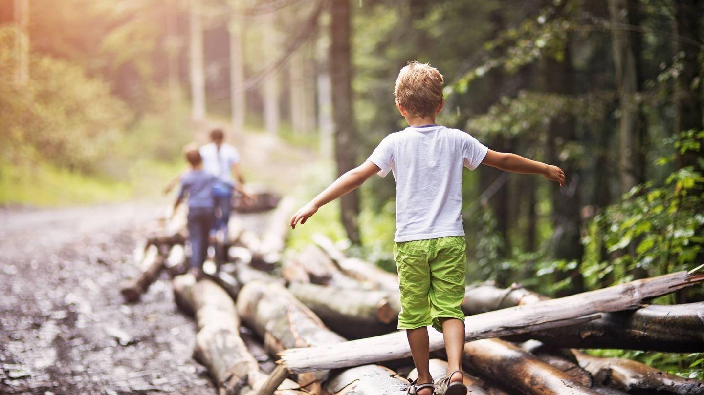 ¿Dejarías que tus hijos explorasen el bosque? (iStock)