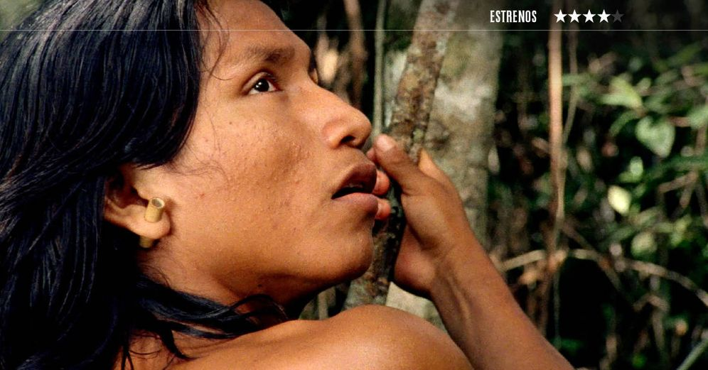 Foto: Una imagen del documental brasileño 'El canto de la selva'. (Surtsey)