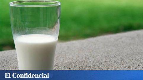 Retiran lotes de leche infantil en España tras los casos de salmonella en Francia