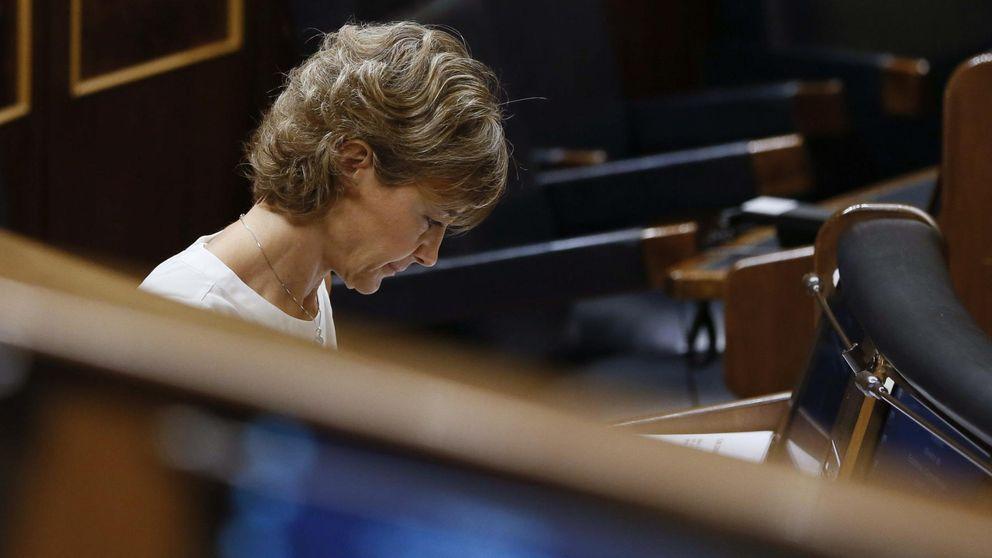 Investigan adjudicaciones a dedo del presidente del Guadalquivir