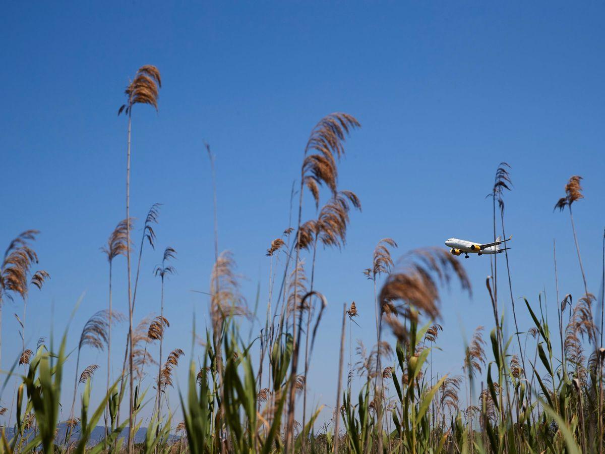 Foto: Un avión sobrevuela las inmediaciones de La Ricarda. (EFE)