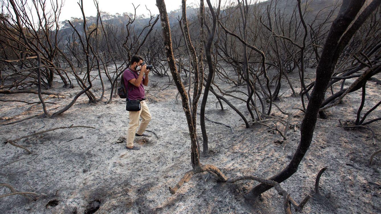 Foto: El incendio ha afectado a más de 10.000 hectáreas. (EFE)