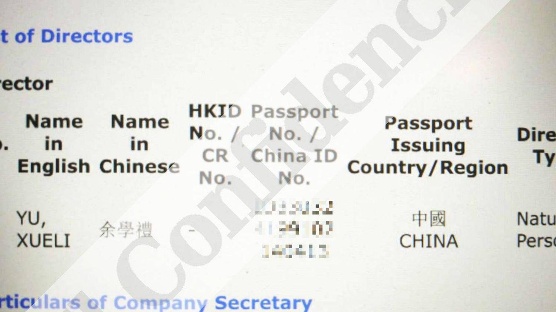 Documento de constitución de la empresa donde aparece el director de la compañía.