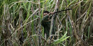 Foto: La agricultura de Cuba se marchita sin la URSS