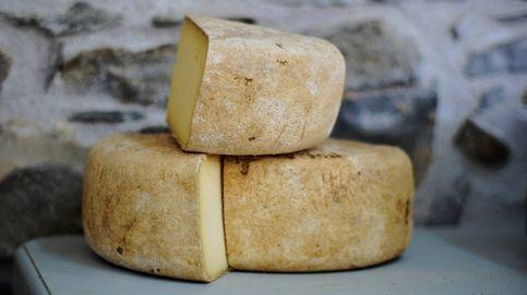 Esta es la molécula del queso que nos ayuda a alargar la vida