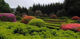 Post de La ruta de las camelias, otra excusa más para viajar a Galicia (de pazo en pazo)