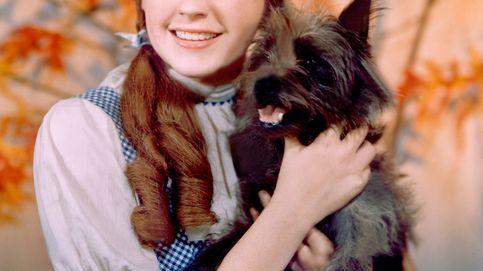 50 años sin Judy Garland: éxito, drogas e intento de suicidio de un icono LGTBI