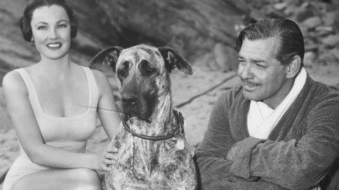 Gene Tierney: el triste final en Hollywood de 'la mujer más bella del mundo'