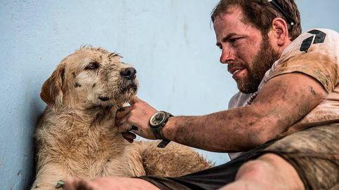 Muere Arthur, el perro ecuatoriano que enamoró a unos deportistas suecos