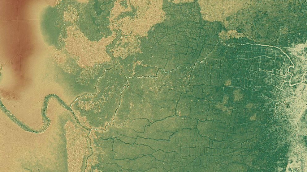 Un estudio señala que los mayas colaboraron con el cambio climático