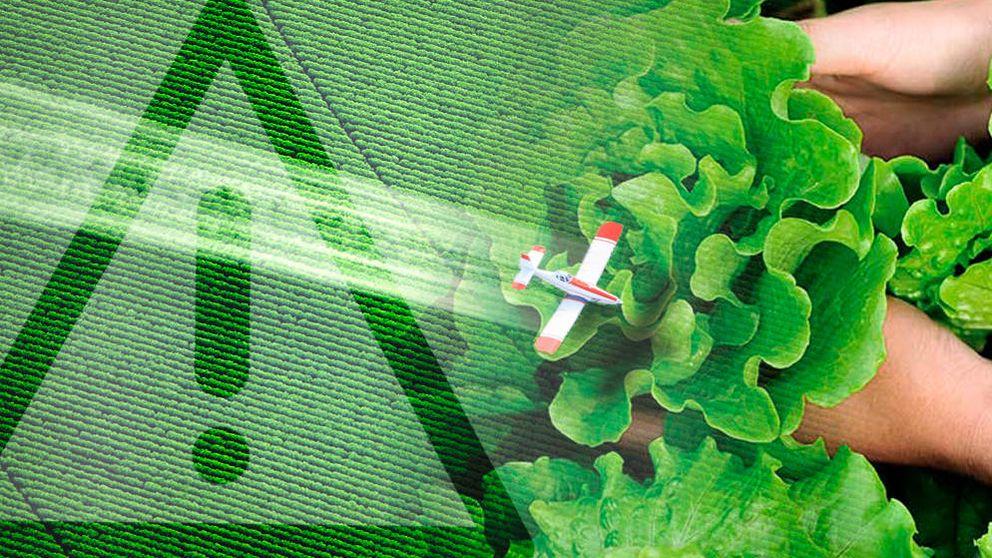España, campeona de Europa en el uso y abuso de químicos para la agricultura