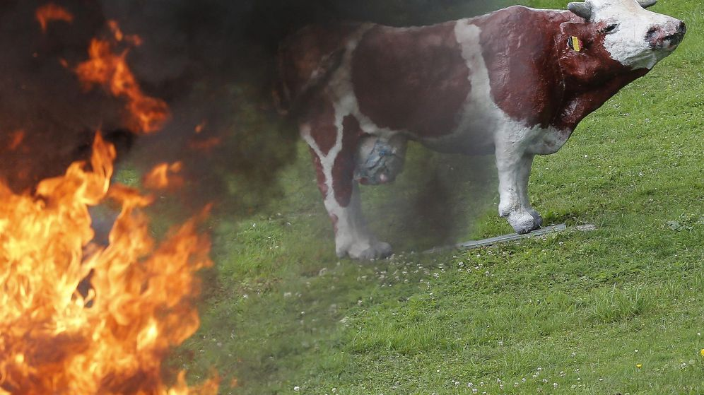 Foto: Imagen de las protestas del sector lácteo en Bélgica. (Efe)