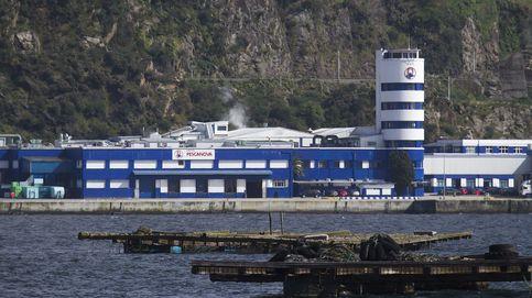 Pescanova prepara un 'plan B' para disputar a la banca el control