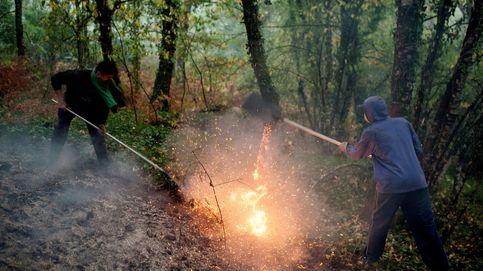 Miles de hectáreas quemadas en Galicia