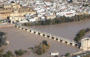 La UE detecta un fraude de 40 millones 'regados' por la Junta en el Guadalquivir