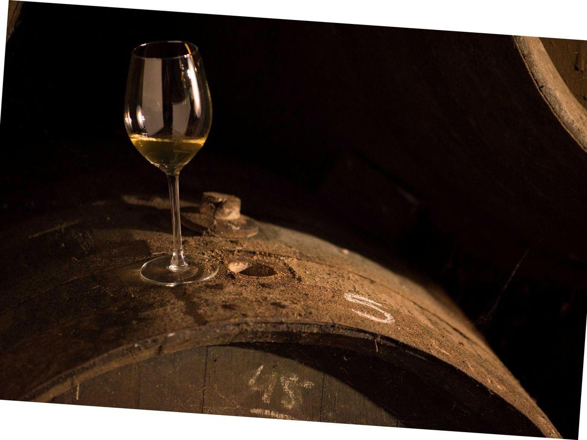 Foto: Vinos de Jerez.