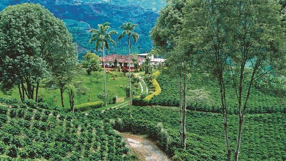 Colombia: alójate en una hacienda, échate en la hamaca y pídete un café
