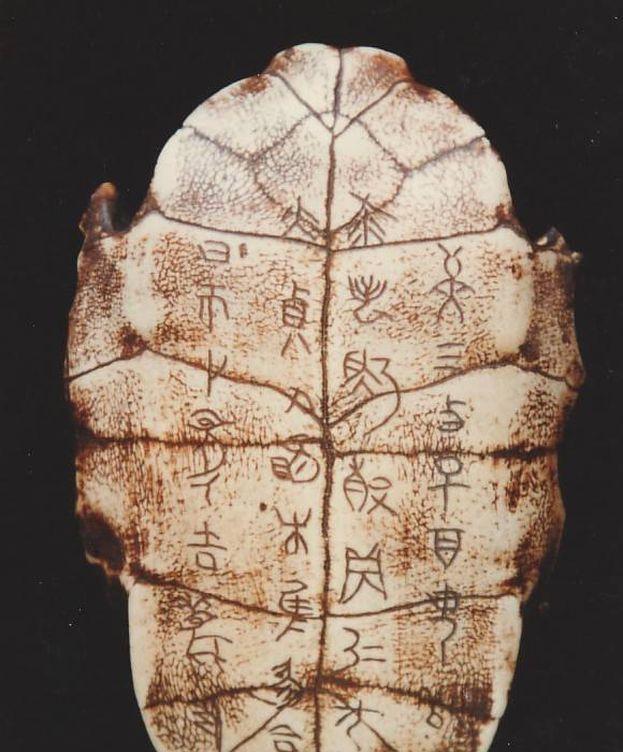 Foto: Las inscripciones tienen más de 3.000 años de antigüedad. (Museo Nacional de Escritura China)